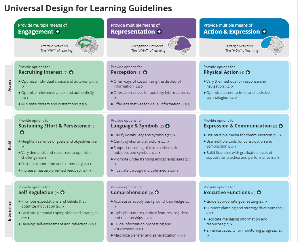 universal design for learning guidelines